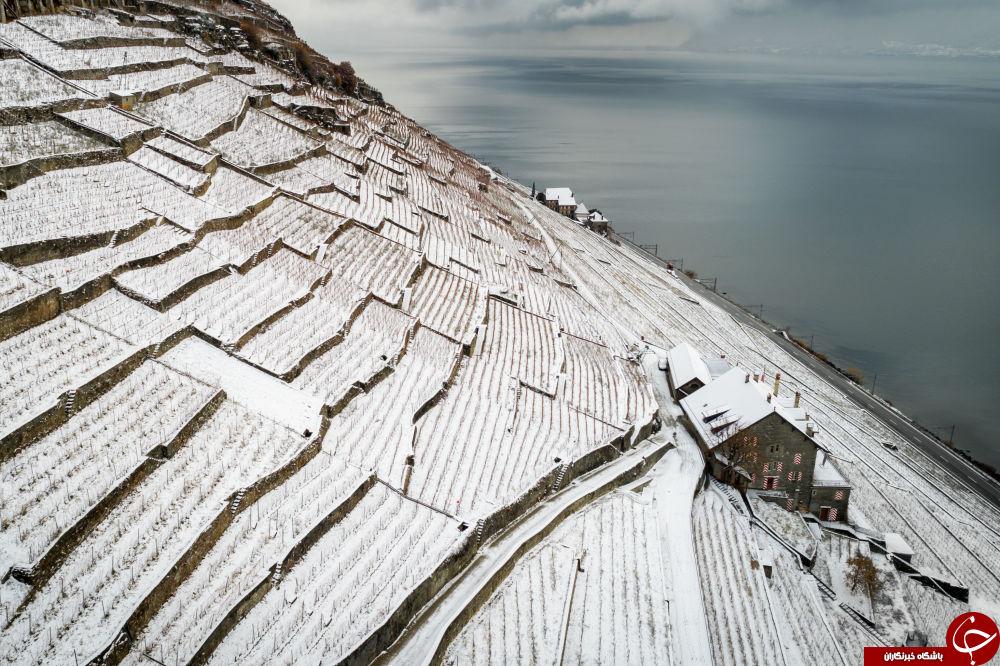 تصاویری جالب و دیدنی از زمستان در نقاط مختلف دنیا