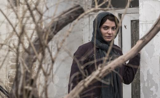 داستانی اجتماعی با نگاهی متفاوت در «دارکوب» + تصاویر