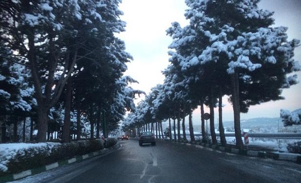 علت سرد نبودن زمستان امسال چیست؟