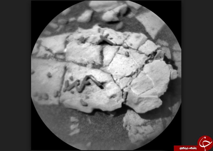 تصاویری که احتمال وجود موجودات فرازمینی در مریخ را قوت بخشید!