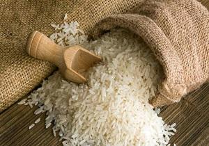 تامین ذخایر راهبردی از محل تولید داخل دستاوردی مهم تلقی می شود/ بازار برنج آرام می گیرد