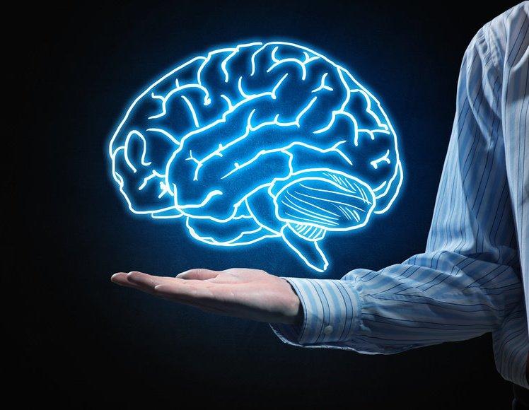 رازهای شگفت انگیز در مورد مغز انسان+فیلم