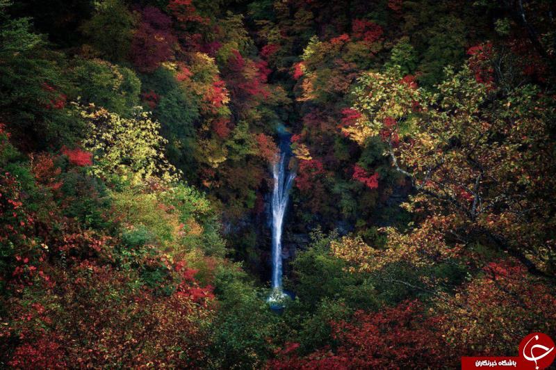 آبشاری در میان رنگها در عکس روز نشنال جئوگرافیک