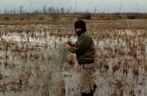 باشگاه خبرنگاران -جمع آوری تور هوایی شکار پرندگان در لاهیجان 