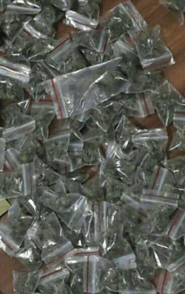 کشف یک کیلو گل از جیب های موادفروش نامجو/ عرضه مواد در بسته بندی دستمال کاغذی