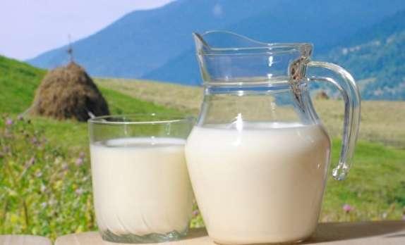 باشگاه خبرنگاران -تولید بیش از ۳ هزار تن شیر در املش