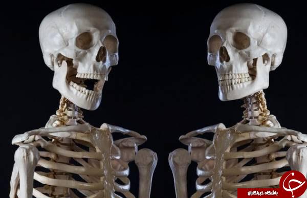 عجیب ترین حراج هایی که تا کنون دیده اید! +تصاویر