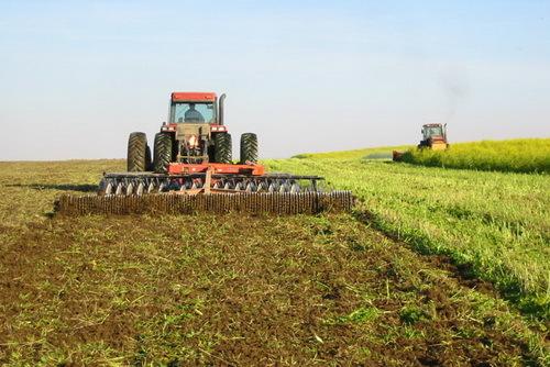 ۲۵۰ هزار هکتار زمین کشاورزی امسال زیر پوشش آبیاری نوین قرار می گیرد