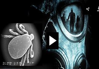 ویروسی مرگبار که نگرانی ها را برانگیخته است + فیلم و تصاویر