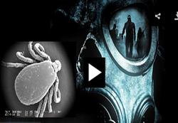 هشدار سازمان بهداشت جهانی درباره یک ویروس مرگبار+ فیلم