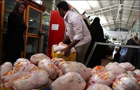 مرغ باز هم ارزان شد/نرخ هر کیلو مرغ 7250 تومان