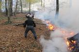 باشگاه خبرنگاران -مهار فاجعه سرخ در جنگل های نکا