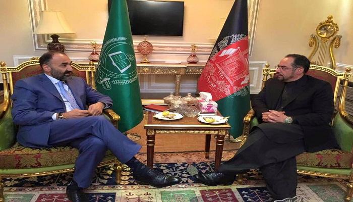 عزیمت «ربانی» و 20 نماینده مجلس افغانستان به بلخ برای صحبت با «عطا»