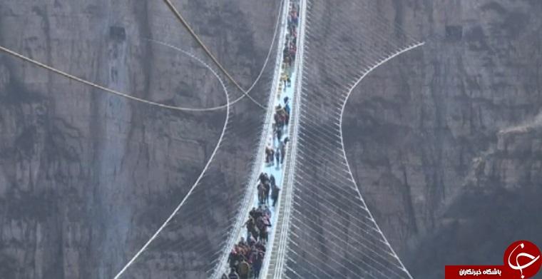 افتتاح طولانیترین پل شیشهای جهان در چین+ تصاویر