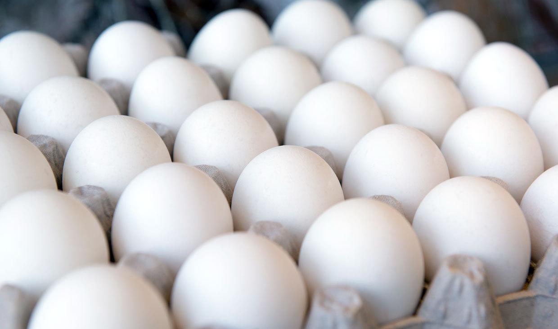 تعرفه ۵درصدی واردات تخممرغ ابلاغ شد