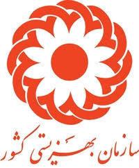 راه اندازی سامانه رصد آسیبهای اجتماعی در ۳۱ استان/صدور 94 هزار کارت معلولیت جدید تا پایان سال