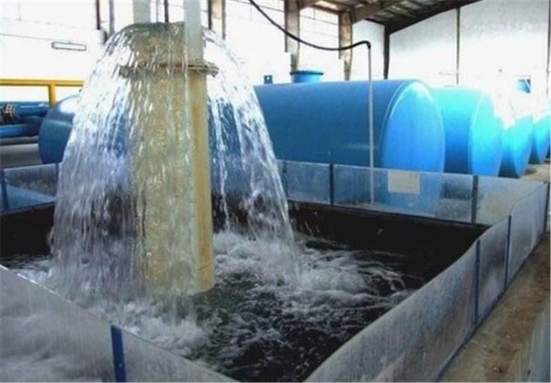 مصرف آب آشامیدنی در شهرهای استان بوشهر ۹ درصد افزایش یافت