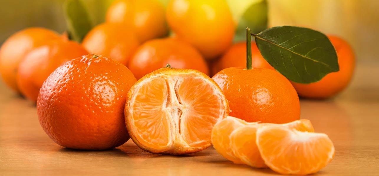 85 درصد واحدهای مسکونی فاقد بیمه زلزله هستند/ نارنگی هم به جرگه میوه های گرانقیمت پیوست!