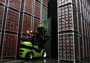 ذخیره سازی ۶۰۰ هزار تن سیب در سردخانههای آذربایجانغربی