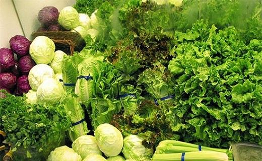 باکتریهایی برای سلامتی/پیشگیری از زوال عقل با مصرف سبزیجات/ماده غذایی موثر در رشد عقلی کودکان/پیامدهای یک کفش نامناسب