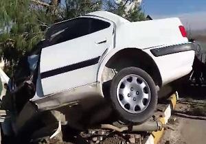برخورد شدید پرشیا با درخت حادثه آفرید + فیلم