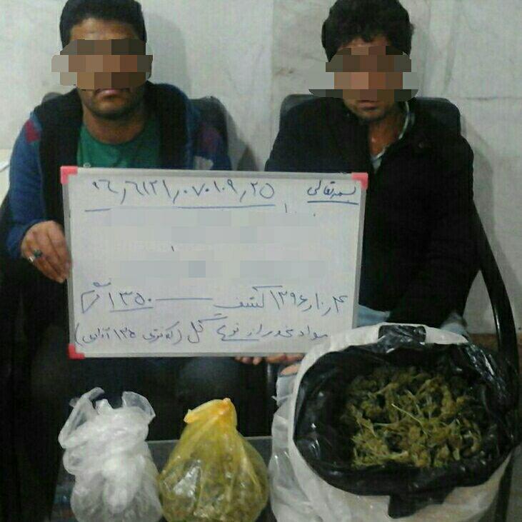 فروشندگان مواد مخدر گل در میدان آزادی به دام افتادند+عکس