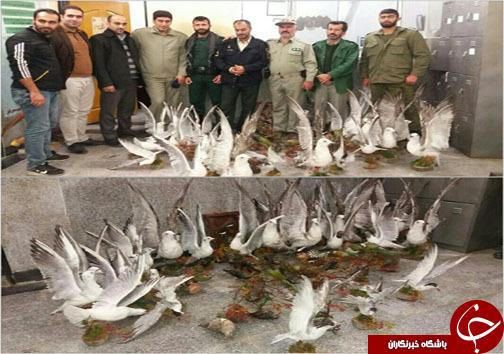 نگاهی گذرا به مهمترین رویدادهای جمعه ۸ دی ماه در مازندران