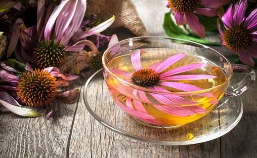 قویترین سلاح گیاهی برای مبارزه با سرماخوردگی