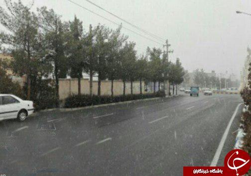 برف پیش بینی نشده در بیرجند+عکس