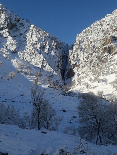 تصویر از دره شیخ عالی بازفت