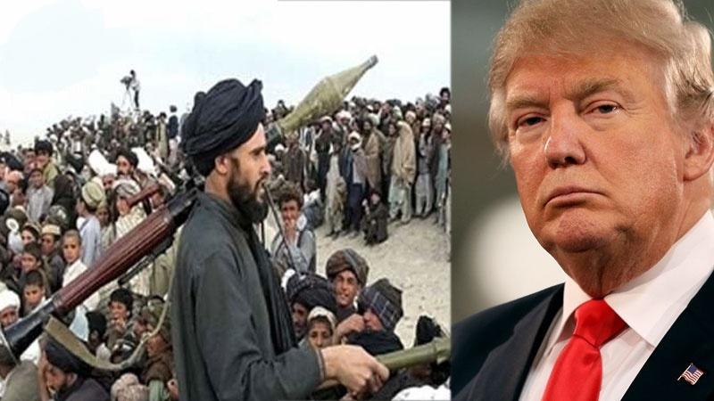 واکنش طالبان به رد کردن مذاکرات صلح توسط ترامپ