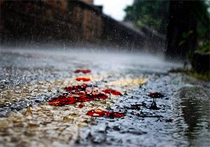 وحشتناکترین حادثه رانندگی در هوای بارانی + فیلم