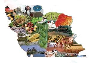 تاملی بر رشد بخش کشاورزی پس از انقلاب/افزایش درآمدهای ارزی به دست کشاورزان
