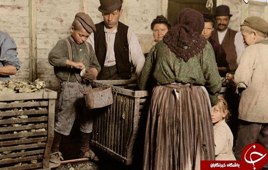کودکان کار آمریکا در صد سال پیش+ تصاویر