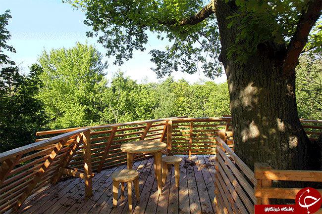 عکس گرانترین خانه زیباترین خانه های درختی جهان زیباترین خانه خانه زیبا خانه درختی چگونه خانه درختی بسازیم