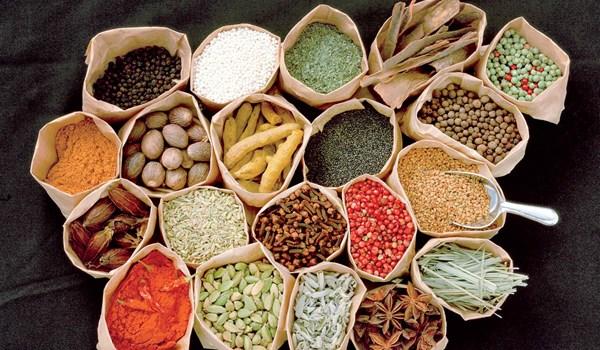 تصویب 2حکم برای توسعه طب سنتی ایرانی در برنامه ششم توسعه