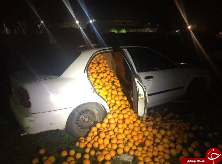 قاچاق 4 تن پرتغال با خودرو+تصاویر