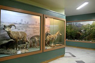 بازدید از گنجبنه تنوع زیستی اصفهان رایگان هست