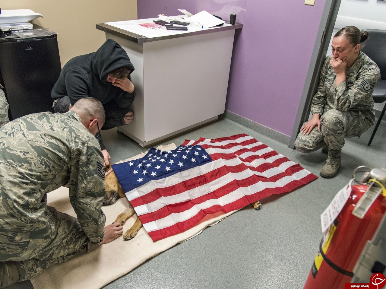 پاداش ۸ سال خدمت در ارتش آمریکا