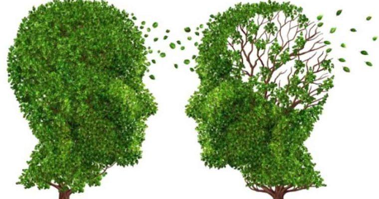 یک تست هوش ساده برای تشخیص زودهنگام آلزایمر