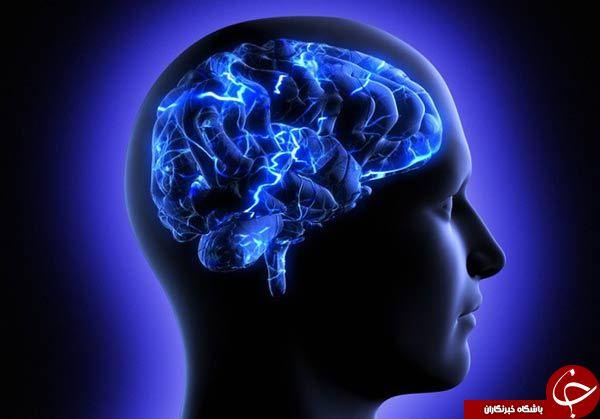 دانستن این رازهای خارقالعاده از مغز شما را شگفت زده میکند
