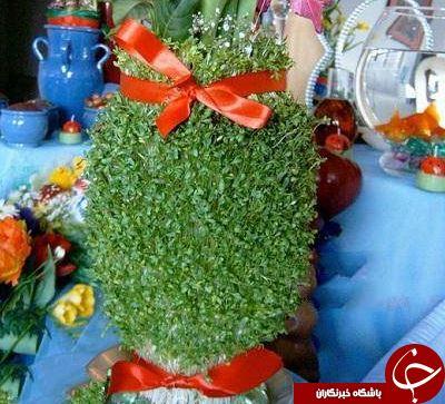 کاشت انواع سبزه برای عید نوروز +دستورالعمل