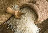 خرید توافقی، راهگشای رونق بازار برنج ایرانی نیست