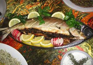ماهیها و غذاهای دریایی ممنوعه در دوران بارداری!