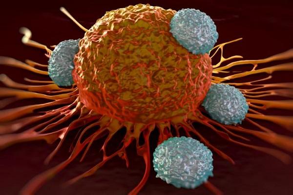ضرورت حمایت بیمهها و وزارت بهداشت برای حمایت از هزینههای درمانی سرطان