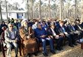 باشگاه خبرنگاران -افزایش صادرات ۲۲ درصدی خرما به خارج از کشور