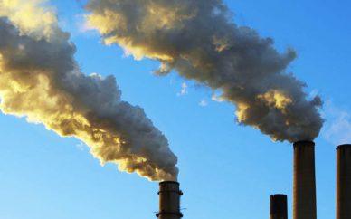 تک جنسی شدن برخی گونه های حیات وحش با افزایش میزان گاز co2