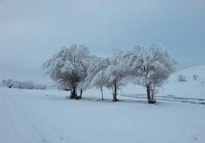 نمایی از طبیعت زمستانی در ورزقان + عکس ها