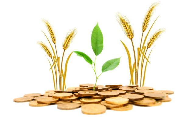 پرداخت ۱۹ هزار و ۴۴۰ میلیارد میلیارد ریال تسهیلات، به کشاورزان