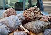 باشگاه خبرنگاران -کشف گوشت غیر قابل مصرف در گرگان